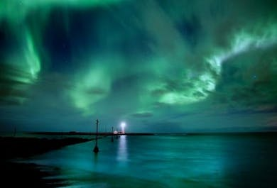 Whale Watching & Northern lights   2-Tour Deal