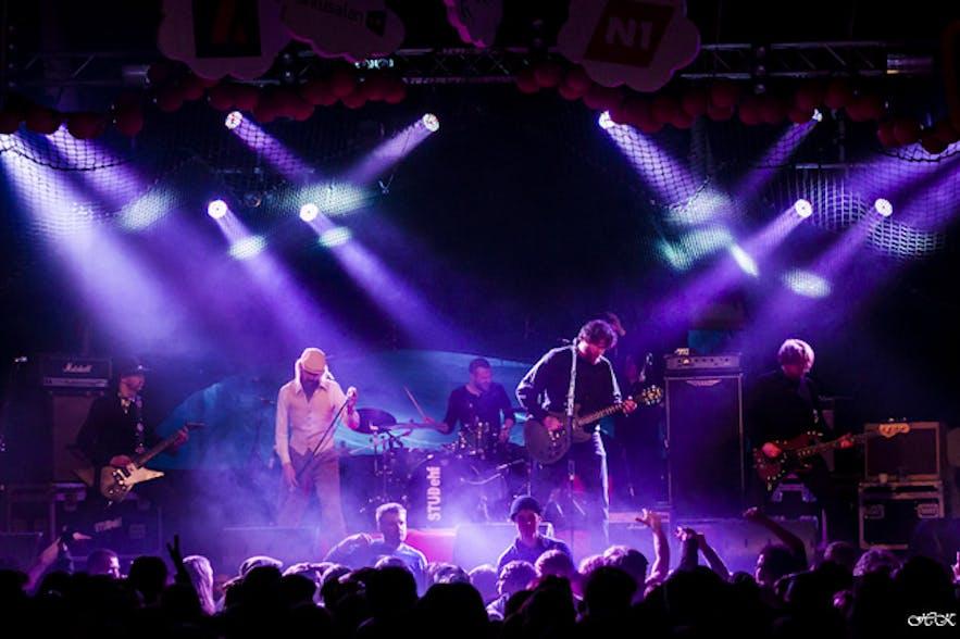 Zespół rockowy HAM na festiwalu
