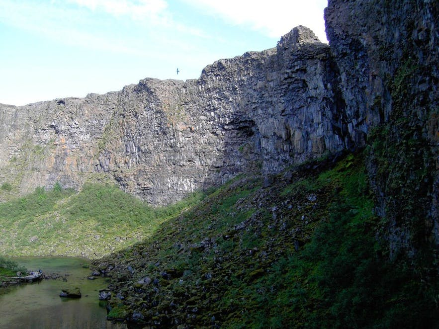 Ásbyrgi canyon from within