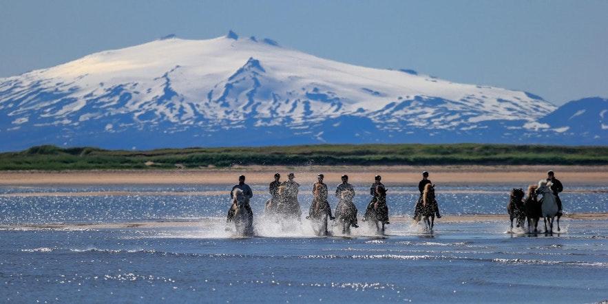 Iceland movies and documentaries worth watching (3).jpg