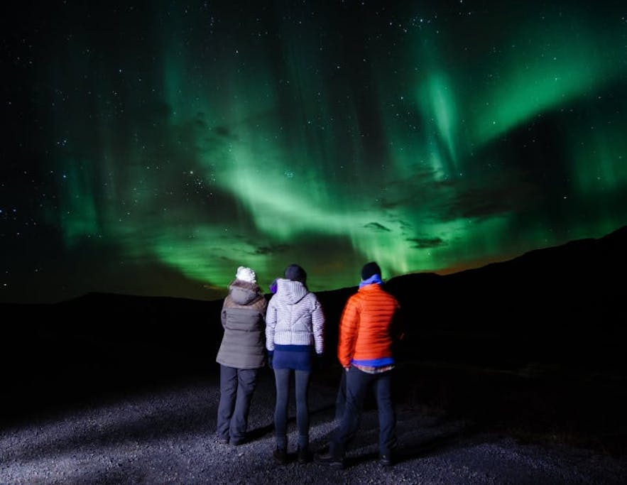A small group admiring the auroras