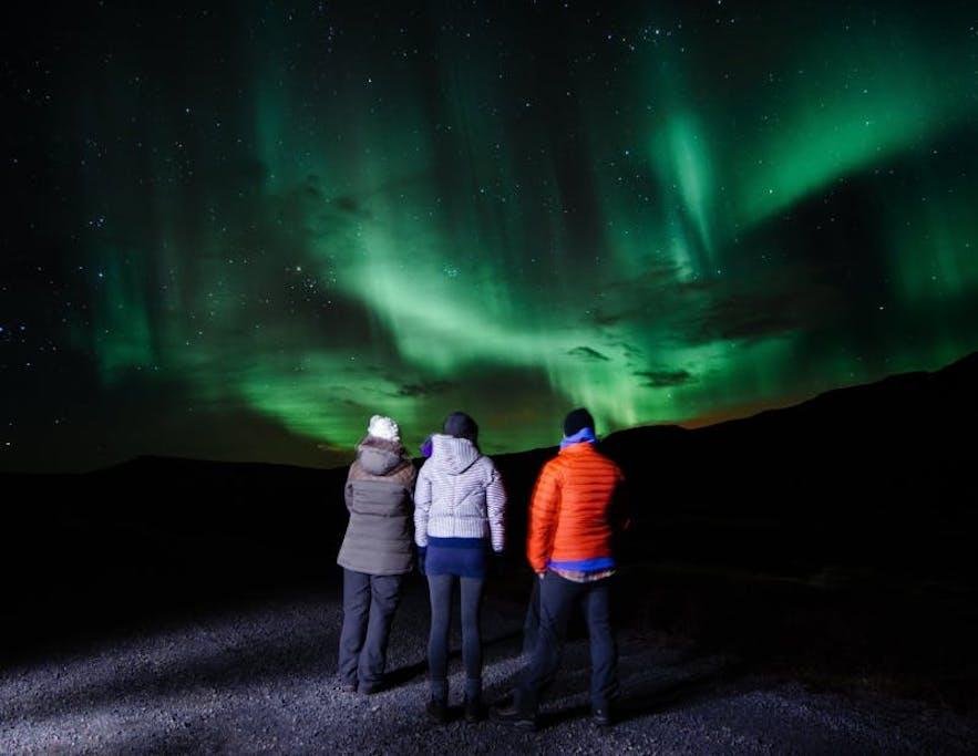 Небольшая группа людей любуется северным сиянием.