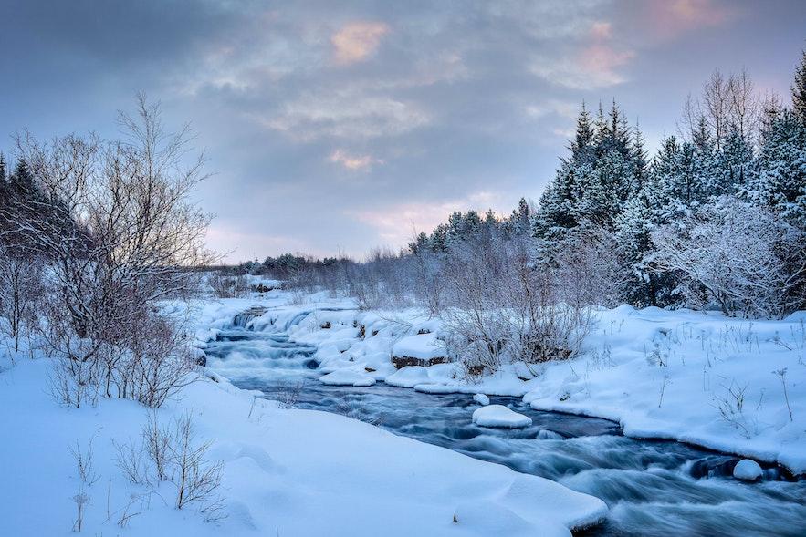 Auch im Winter ist Elliðaárdalur einen Ausflug wert!