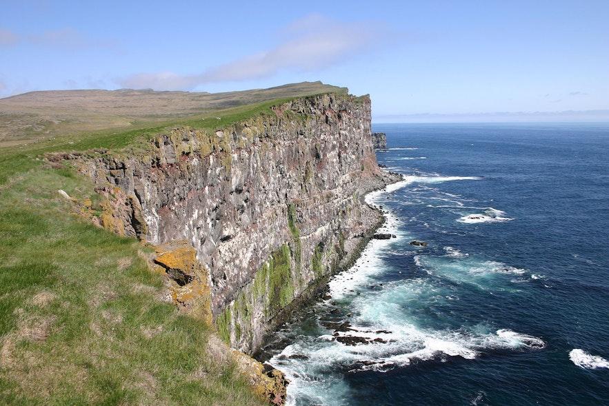 Klify Latrabjarg na Fiordach Zachodnich Islandii.