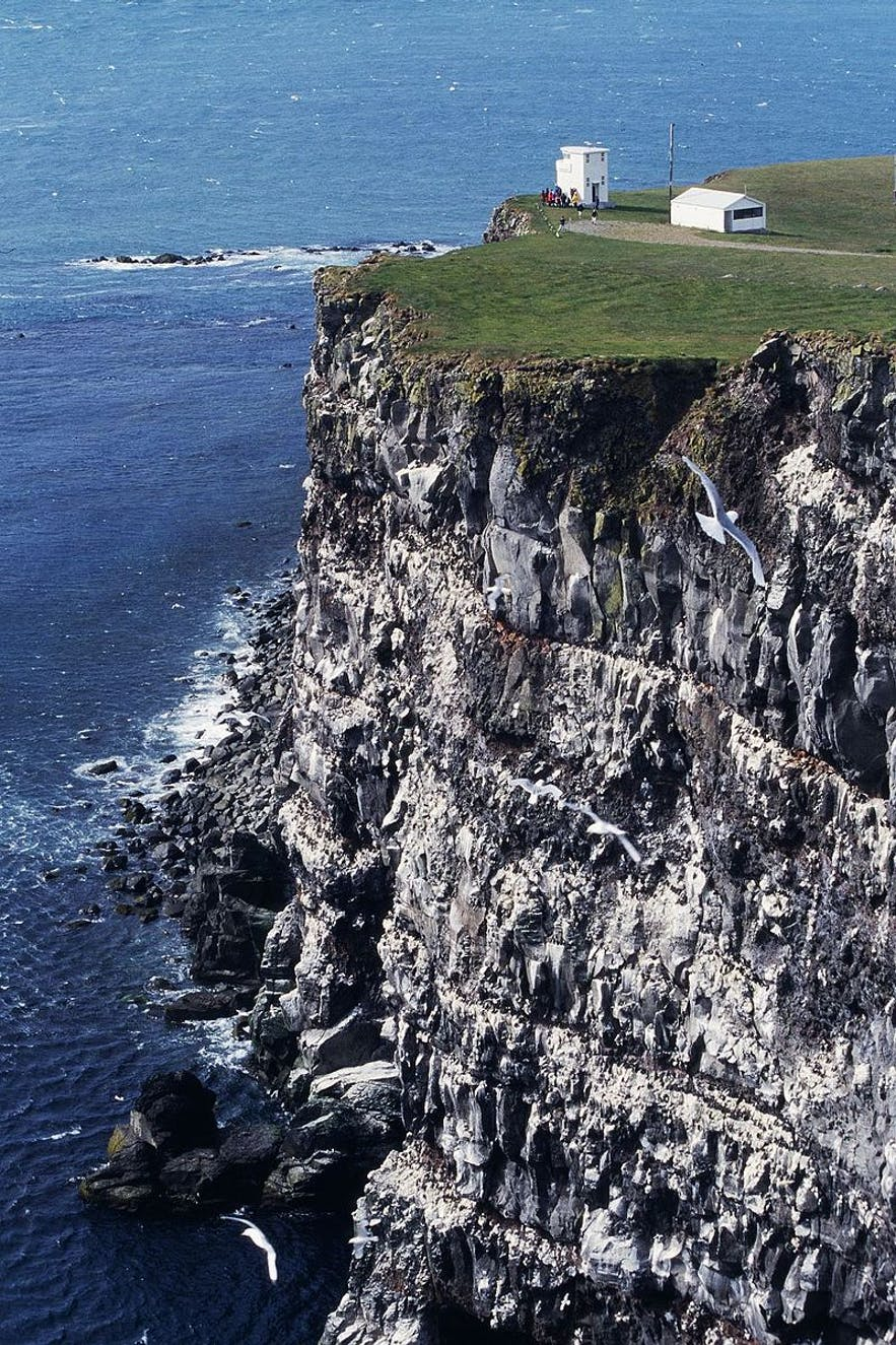 Icelandic traditions mean that locals are able to scale these mighty cliffs