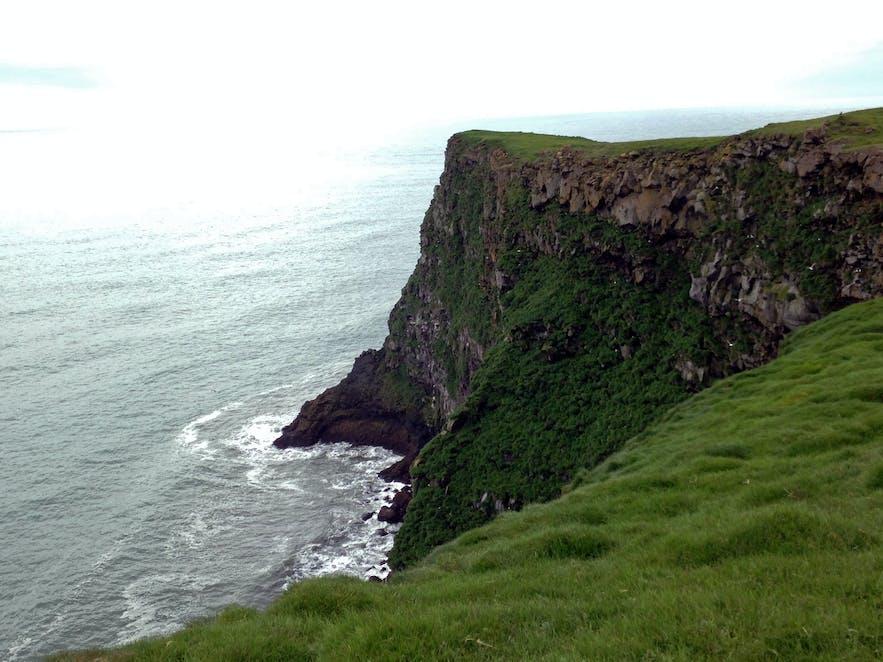 The cliffs at Ingólfshöfði