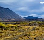 Iceland's nature is full of contrast in colour and texture, green moss against impressive blue mountains.