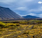 Islands Natur ist kontrastreich in Farbe und Struktur, hier sieht man grünes Moos vor beeindruckenden blauen Bergen.