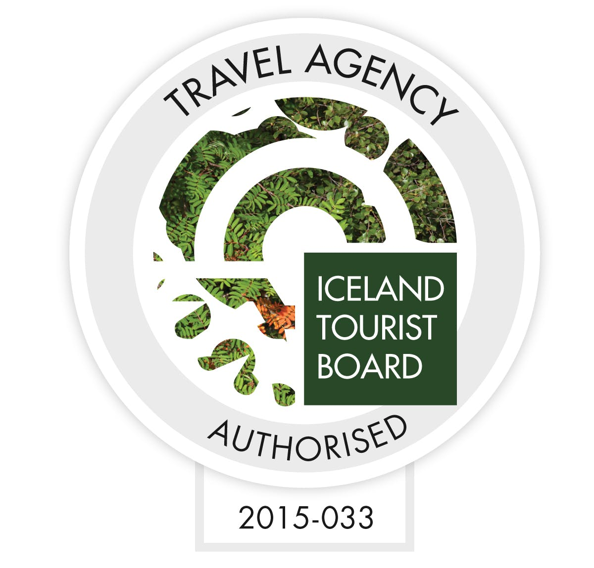 Iceland by Bus | South Coast Bus Passport
