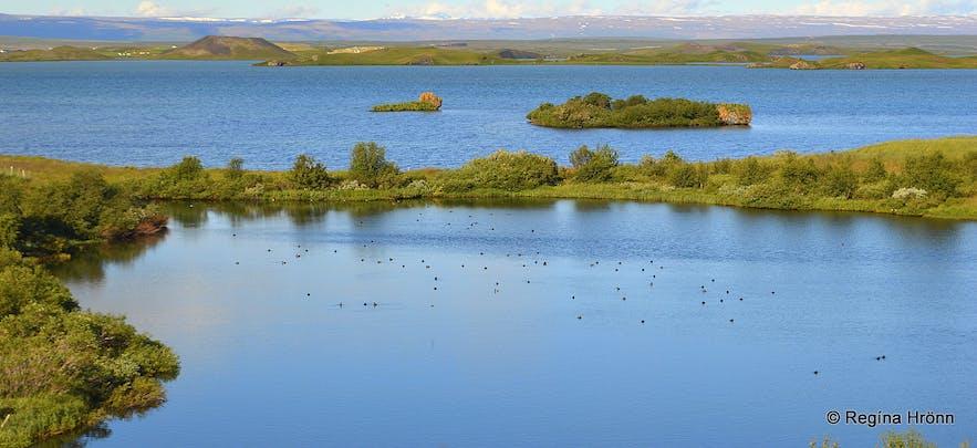 Úlfhildur the Elf-lady at Lake Mývatn in North-Iceland - Icelandic Folklore
