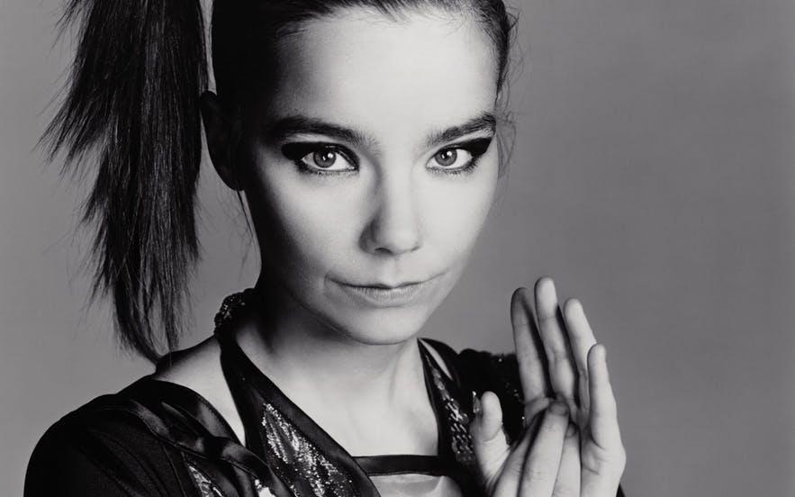 A portrait of Björk