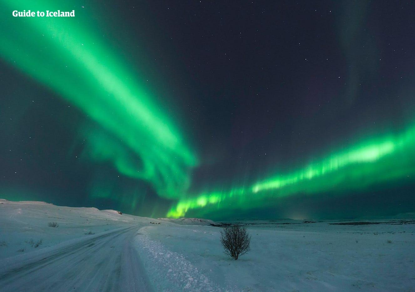Eine Mietwagenreise gibt dir die Möglichkeit, in Eigenregie noch den Nordlichtern zu suchen.