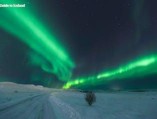 Viaje de 7 días a tu aire en invierno | Vacaciones con auroras boreales y cueva de hielo