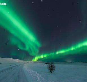 7 dni, samodzielna podróż   Polowanie na zorzę polarną i jaskinia lodowa