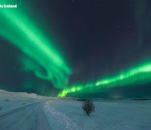 ขับรถเที่ยวเองหน้าหนาว 8 วัน   แสงเหนือและถ้ำน้ำแข็ง