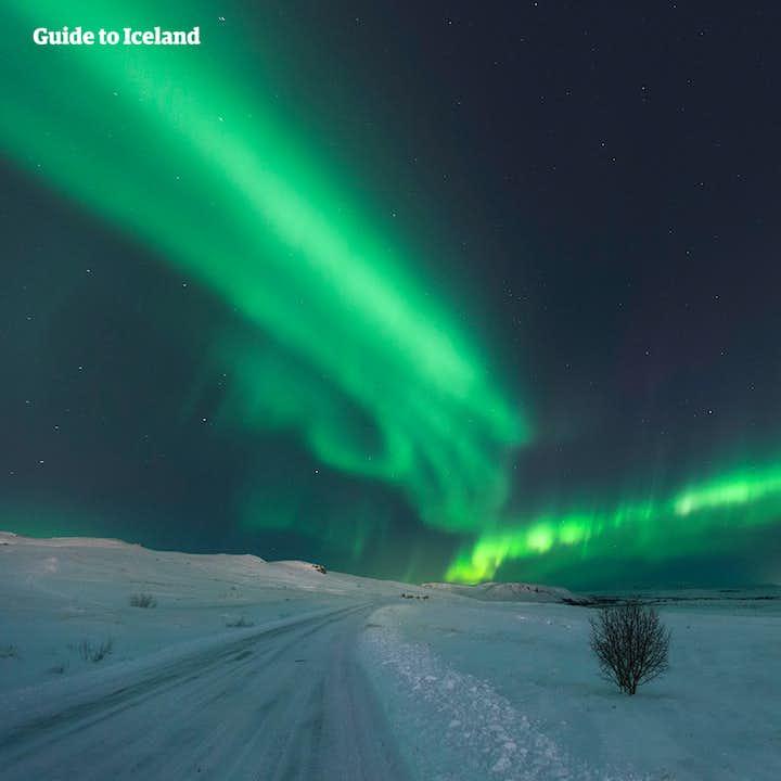 8-dages kør selv-vinterferie | Nordlys og isgrotter