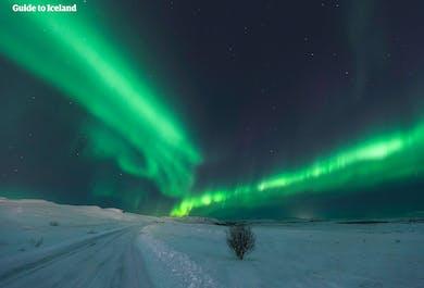 Autotour hiver de 8 jours | Mosaïque du Sud sous les aurores boréales