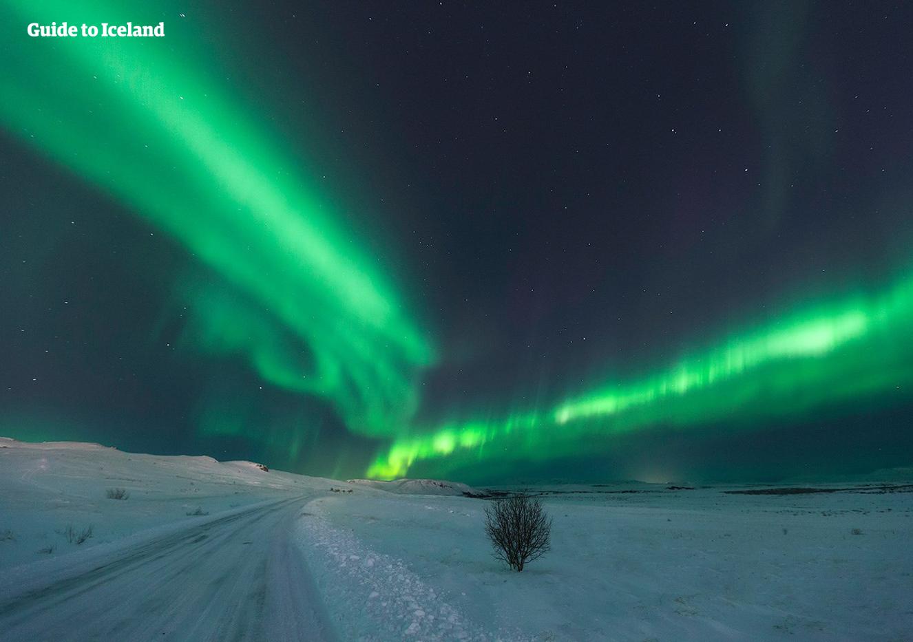 Reisende mit Mietwagen können selbst entscheiden, wo sie nach den Nordlichtern suchen und wie lange sie verweilen wollen, sodass die Chancen, dieses atemberaubende Phänomen zu sehen, maximiert werden.