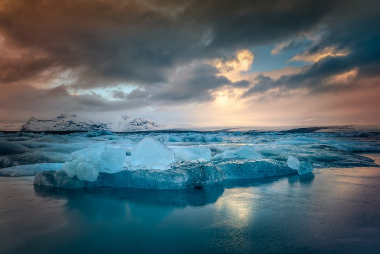 Not only can you see icebergs at Jökulsárlón glacier lagoon, you might also spot some friendly seals.