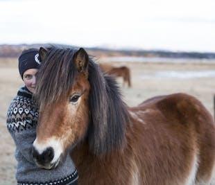 Courte balade à cheval vers Hveragerdi | Non loin de Reykjavik