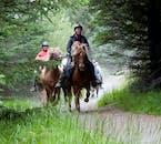 アイスランドの田舎をトレッキングする乗馬体験