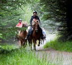 Ride through forests and countryside on the back of an Icelandic horse.