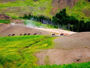 レイキャダルル渓谷で行う3時間の乗馬ツアー