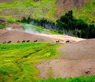Balade à cheval de 3h au coeur de paysages géothermiques