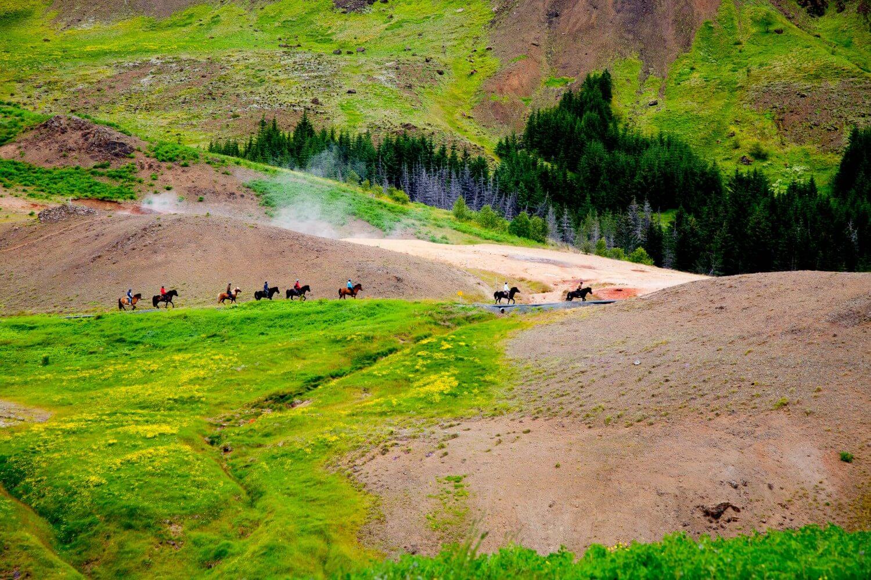 Islandshästar passerar över dalen Reykjadalur.
