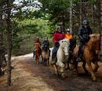 На конной прогулке вы увидите разнообразные природные ландшафты, от лесов до геотермальных источников.