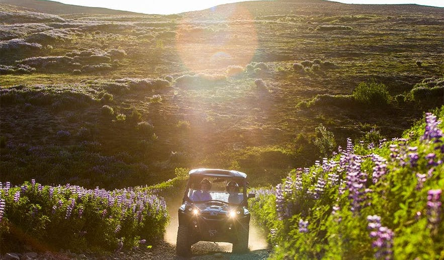 ATVs and Buggy tours allow you to see a lot of landscape quickly, passing rivers, valleys, volcanic plateaus and flowering fields.