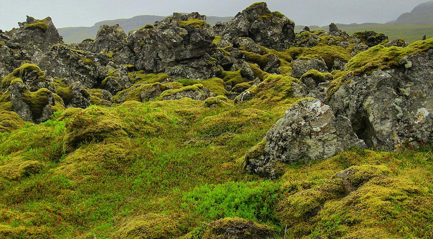 Natural Mineral Springs on the Snæfellsnes Peninsula in West-Iceland