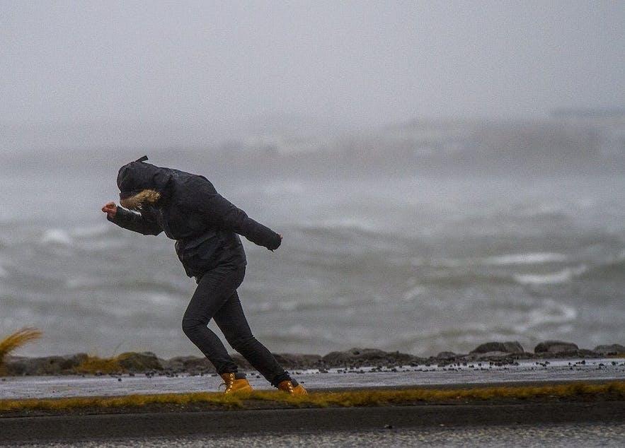 冰岛人无论刮风下雨,一年四季都烧烤