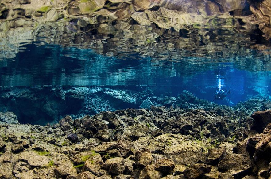 Błękitna woda w szczelinie Silfra w Parku Narodowym Thingvellir.