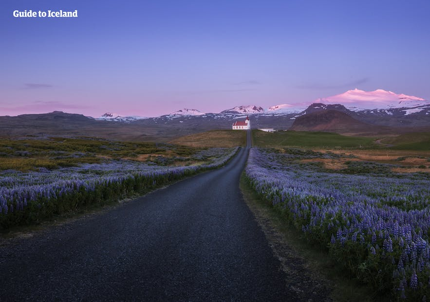 Snaefellsjokull is an ever present site as you journey around this Icelandic national park.
