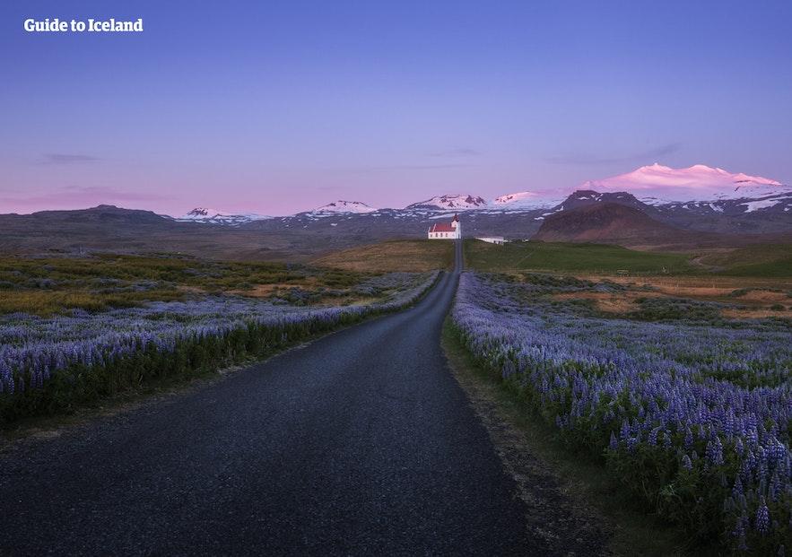 Auf der Reise durch diesen isländischen Nationalpark ist der Snaefellsjokull immer präsent.
