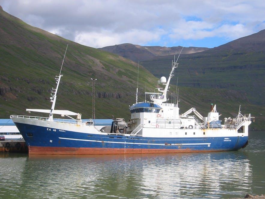 An Icelandic trawler in a fjord
