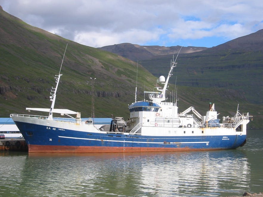 Fishing in Iceland | Guide to Iceland