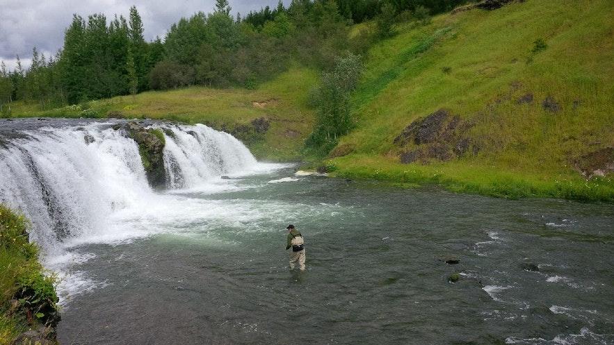 아이슬란드의 아름다운 낚시 포인트