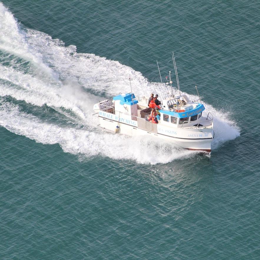 후사비크에서 출발하는 바다 낚시 투어