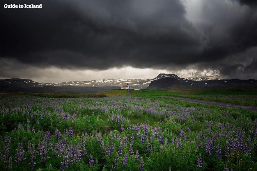 Dramatyczne niebo nad półwyspem Snæfellsnes na Islandii.