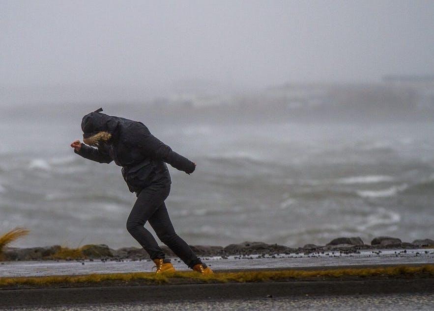 冰岛的大风举世闻名