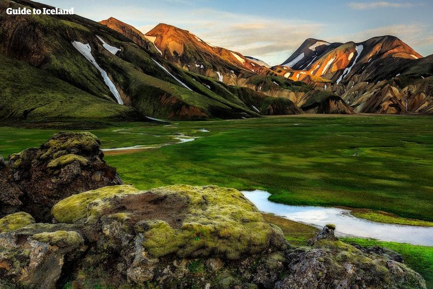 冰岛兰德曼纳劳卡地区的苔藓地
