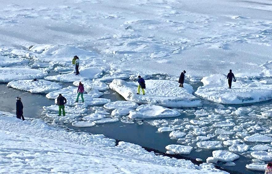 Вот великолепный пример того, как вести себя НЕ надо. НЕ ХОДИТЕ по айсбергам. Нормальные люди так не делают.