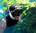 シルフラの泉に生息する魚はないが、「トロールの髪の毛」と呼ばれる海藻が見られる