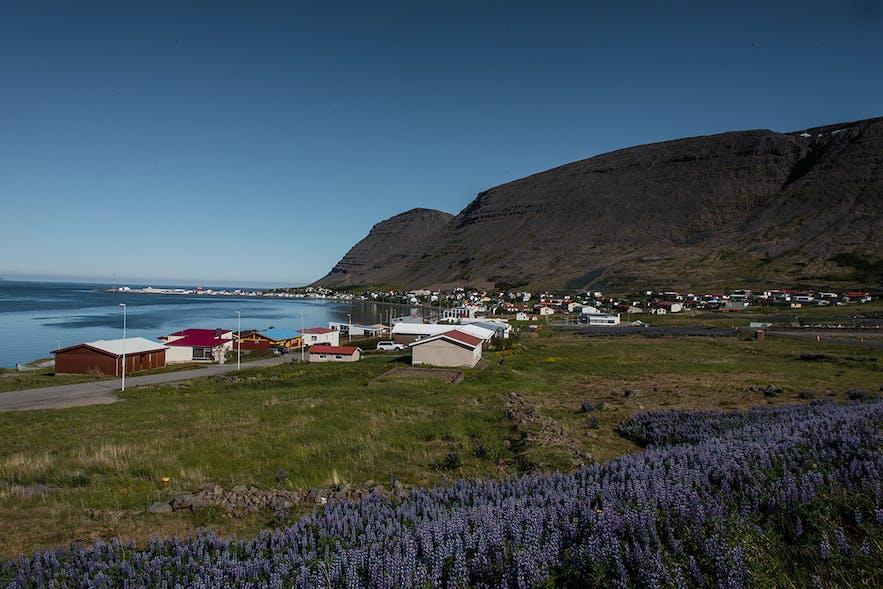 Patreksfjörður, in the Westfjords