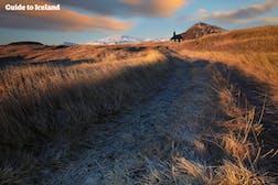 斯奈山冰川国家公园