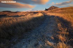 Parc National Snæfellsjökull