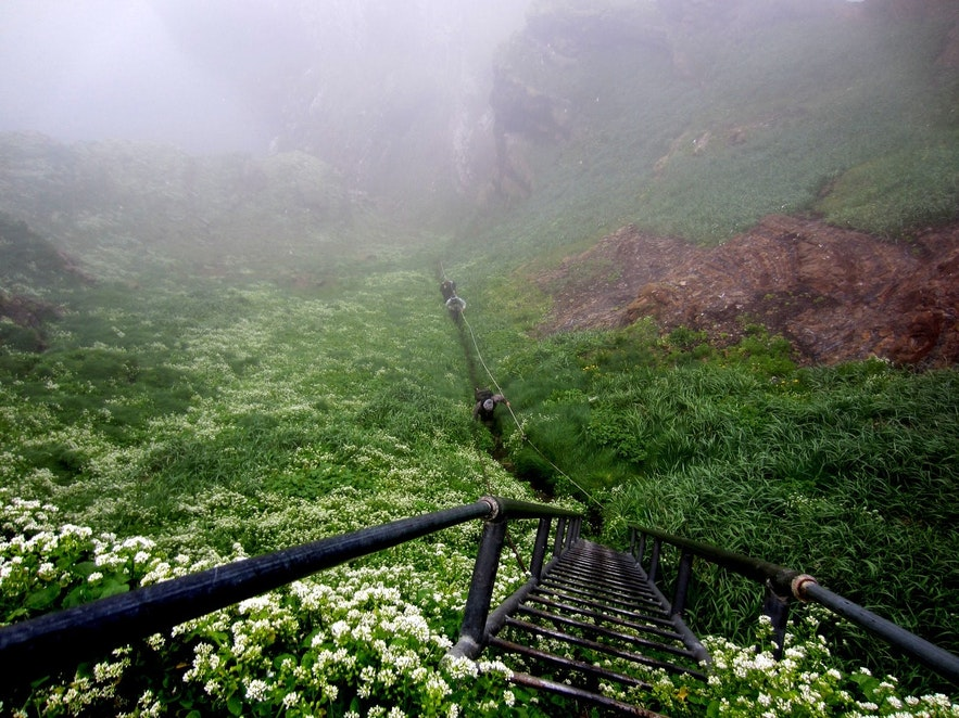 The ladder, rope and chain leading up to the top of Drangey's cliff