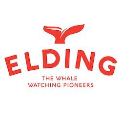 Elding Adventure at Sea logo